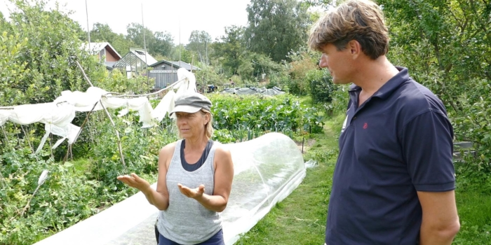 Permaculture on a Swedish Island (SWE)